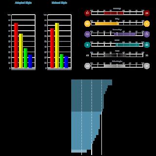 TriMetrix® DNA - ©ARGAVAN CONSULTING