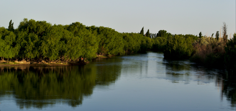 Gestión del Cambio - ARGAVAN CONSULTING